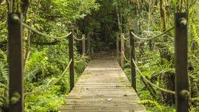 Holzbrücke und Seile stockfotos