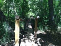 Holzbrücke zum versteinerten Bachwasser Stockbild