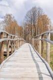 Holzbrückebahn durch den Wald in Galizien Spanien Stockbild
