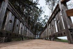 Holzbrückegehweg durch Ozean vom niedrigen Winkel stockfotos