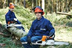 Holzfäller-Arbeitskraft mit Kettensäge im Wald Stockfotos