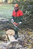 Holzfäller bei der Arbeit Stockfoto