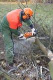 Holzfäller bei der Arbeit Stockfotos