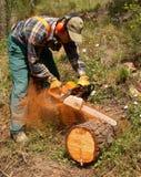 Holzfäller in der Tätigkeit lizenzfreie stockfotos