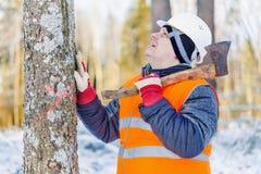Holzfäller im Wald nahe Baum mit einer Axt Stockfoto