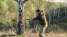 Holzfällerarbeitskraft, die hinunter einen Baum abbricht viele Splitter im Wald mit großer Axt hackt Starker gesunder Erwachsener stock footage