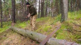Holzfällerarbeitskraft, die hinunter einen Baum abbricht viele Splitter im Wald mit großer Axt hackt Starker gesunder Erwachsener stock video footage