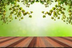 Holzfußboden-Frühlings-Dekorations-Hintergrund Lizenzfreie Stockfotografie