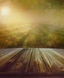 Holzfußboden mit einem Graslandweg Stockfotos