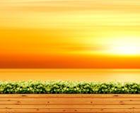Holzfußboden Park im im Freien und im orange Himmelsonnenlicht und im Seehintergrund Lizenzfreie Stockbilder