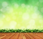 Holzfußboden- und Blatttee Lizenzfreie Stockbilder