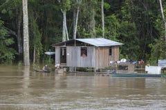 Holzhaus auf Stelzen entlang dem Amazonas und dem Regenwald, B Lizenzfreies Stockfoto