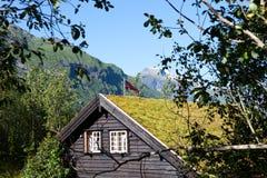 Holzhaus mit Gras auf Dach Stockfotos