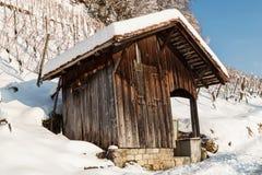 Holzhaus vor Weinbergplantage im Winter Lizenzfreies Stockbild