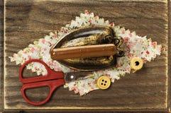 Holzkiste für das Nähen Lizenzfreies Stockbild