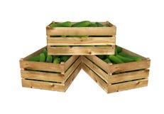 Holzkiste voll Gurken Getrennt auf weißem Hintergrund vektor abbildung