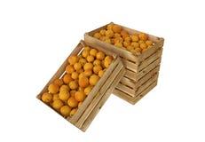 Holzkiste voll Pfirsichfrucht Getrennt auf weißem Hintergrund stock abbildung