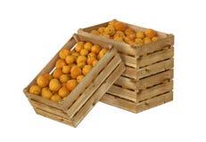 Holzkiste voll Pfirsichfrucht Getrennt auf weißem Hintergrund lizenzfreie abbildung