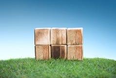 Holzklötze auf einem grünen Gras lizenzfreie stockfotos