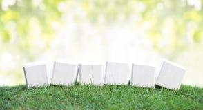 Holzklötze auf einem grünen Gras stockfoto