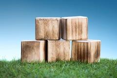 Holzklötze auf einem grünen Gras lizenzfreies stockbild