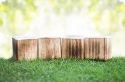 Holzklötze auf einem grünen Gras lizenzfreie stockfotografie