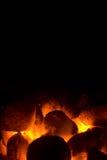 Holzkohlefeuer für Grill Stockbild