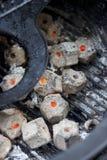 Holzkohlenbriketts innerhalb des Grills stockbilder