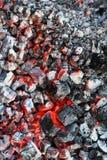 Holzkohleverbrennung Stockbild