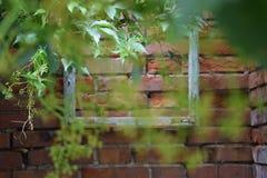 Holzrahmen auf einer Wand im Garten Lizenzfreies Stockfoto