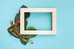 Holzrahmen mit grünem Blatt und trockener Blume Lizenzfreie Stockbilder