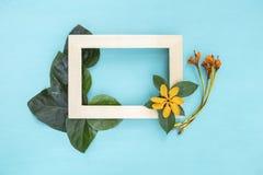 Holzrahmen verzieren mit Blume und grünem Blatt Lizenzfreies Stockbild