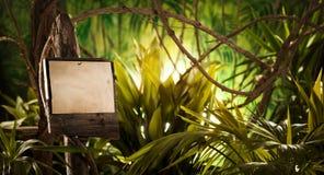 Holzschild im Dschungel Stockfoto