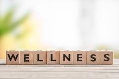 Holzschild mit dem Wort Wellness stockfotografie