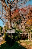 Holzschild- und Herbstlaub in Kirschblüte-Stadt, Chiba, Japan Stockfotos