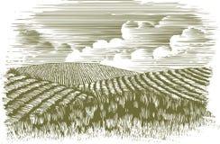 Holzschnitt-Bauernhof-Felder Stockfotos