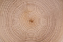 Holzschnitt kreist Beschaffenheit ein Stockbilder