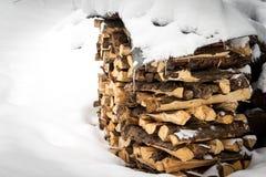 Holzschuppen fast vollständig bedeckt durch Schnee Stockfotos