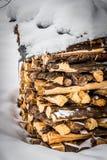 Holzschuppen fast vollständig bedeckt durch Schnee Lizenzfreies Stockfoto