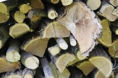 Holzschuppendetail Stockbild