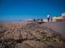 Holzschwelle am Strand lizenzfreie stockbilder