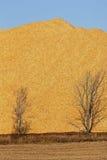 Holzspan-Sägemehl-Stapel-Bäume vertikal Stockfotos