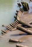 Holzstapel, die in Wasser sich lehnen Stockbild