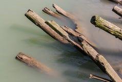 Holzstapel in Steveston Stockfotografie