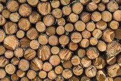 Holzstoß Stockbilder