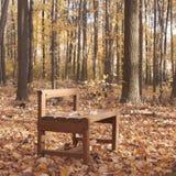 Holzstuhl im Herbstwald-landscapre Lizenzfreie Stockfotografie