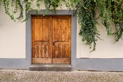 Holztür überwältigt mit Efeu Lizenzfreies Stockfoto
