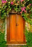 Holztür mit Natur stockfotografie