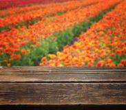 Holztisch gegen Blumenhintergrund Stockbilder