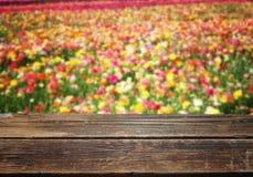 Holztisch gegen Feld von colorfull Blumen Lizenzfreie Stockbilder